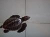 Indon-046